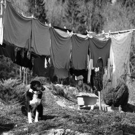 Hlídač velkého prádla