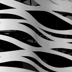 Zebra z Barcelony