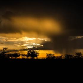 Večerní bouře nad Masai Marou