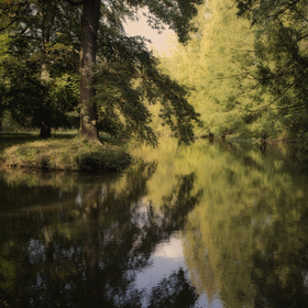 Ticho v parku
