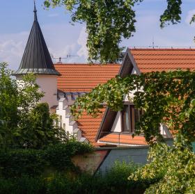 Dům za stromy