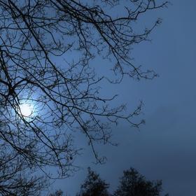 Sviť měsíčku sviť