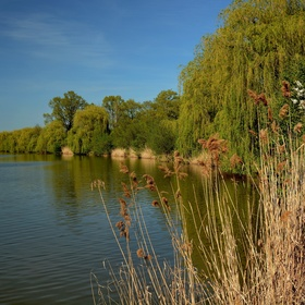 Jistebnický rybník Bezruč