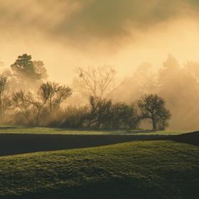 Jarní mlhavé ráno
