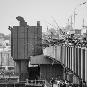 Rybári na Galata Bridge