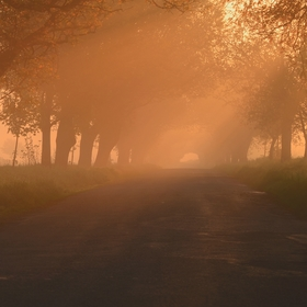 ... Magické ráno ...