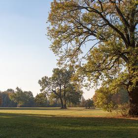 Podzim u Nemošic