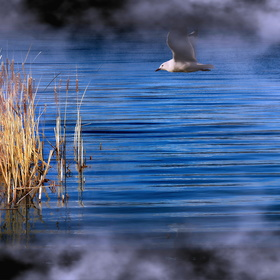 Nad jezerem