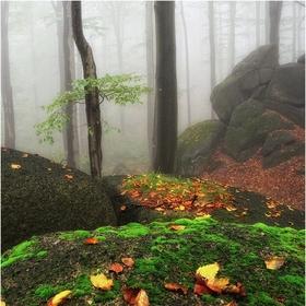 Podzim v Lysých skálach