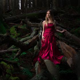 Růže v  temném lese