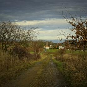 Odpolední procházka