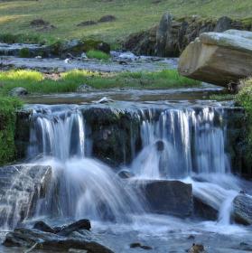 Příroda Nové Losiny