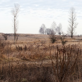 Krajina u Milovic