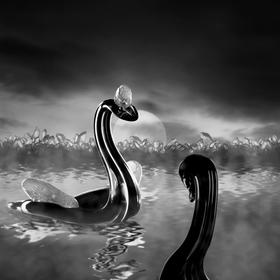 Labutí královna - naivní obraz se skleněnými předměty
