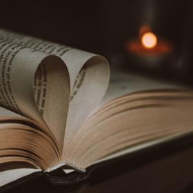 Zamilovaná kniha