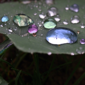 Barvy v kapkách vody