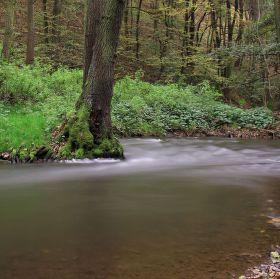potok Loděnice