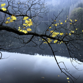 Podzim na Černém jezeře