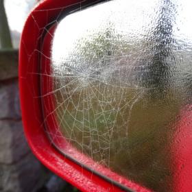 pavučinové zrcadlení