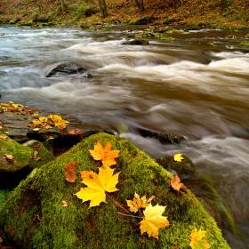 Podzim v Pekle...