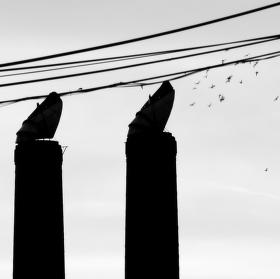 Výfuky podle větru