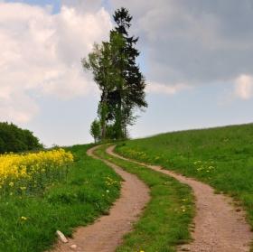 Klikaté cesty - nejen životem