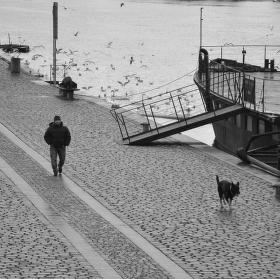 Venčení u Vltavy