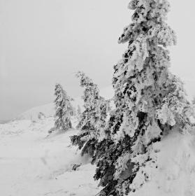 Ledoví muži - Servác, Pankrác a Bonifác