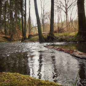 Žbluňkající potok