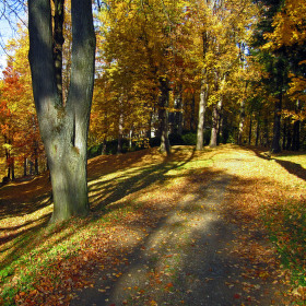 podzim v Jeseníku