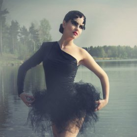 Černá labuť II