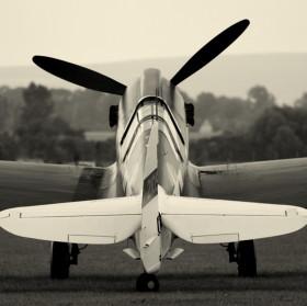 P 40 Warhavk