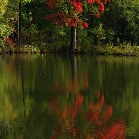 signál podzimu