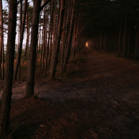 Tunel w Łebie