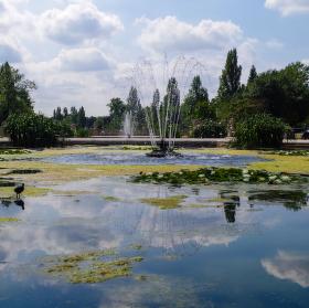 Kašna v Hyde Parku