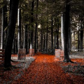 Cesta do neznáma