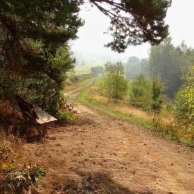 Lavička u cesty