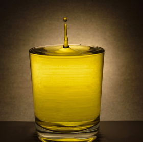 Vodní svíčka