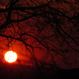 Hřejivý západ slunce.