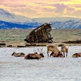 vrak vikingske lode v Tisnes/Norsko
