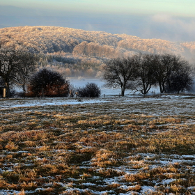 Paseky v zimě