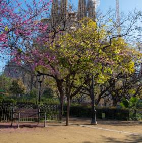 Jaro v Barceloně