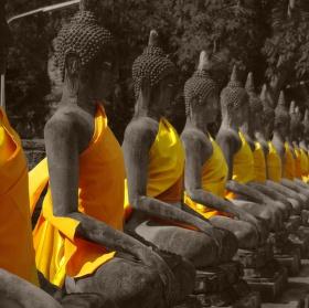 Budhove
