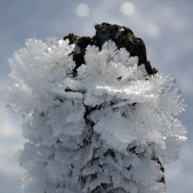 Ledová krajka