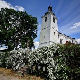 Kostel Nanebevzetí pany Marie v Předenicích