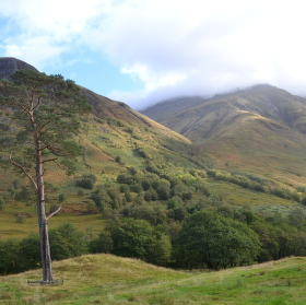 Údolí pod Ben Nevis - Skotsko