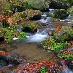 Kouzlo rešovských vodopádů