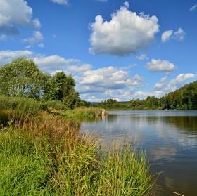 Božíčanský rybník
