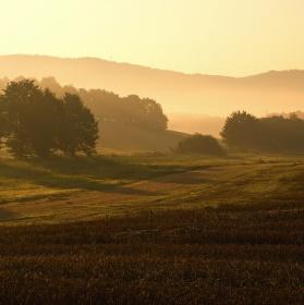 Toulky ranní krajinou