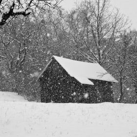 Když sněží